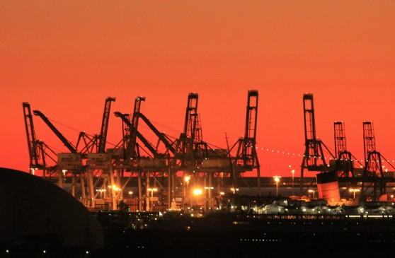 Sunset Cranes cropped